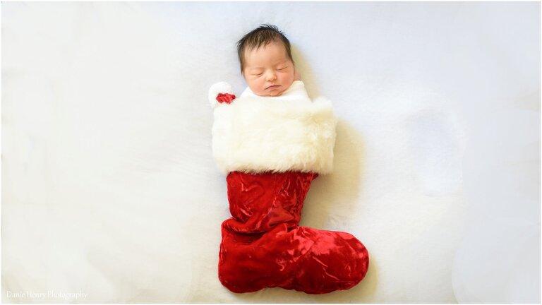 Newborn Photographer South Bay